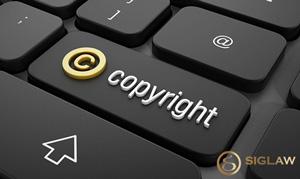 Các trường hợp được bảo hộ quyền tác giả