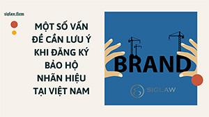 Một số vấn đề cần lưu ý khi đăng ký bảo hộ nhãn hiệu tại Việt Nam