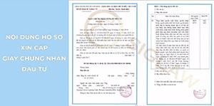 Hồ sơ xin cấp giấy chứng nhận đăng ký đầu tư